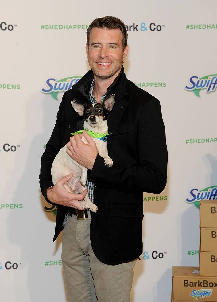 """Scott Foley holds a rescue dog at Swiffer's """"Welcome Home"""" event, Thursday, Nov. 12, 2015, in New York. Foley has partnered with Swiffer to spread the word that cleaning concerns should never be an obstacle to bringing home your child's first pet."""