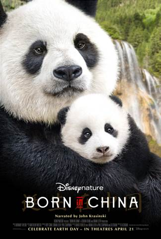 """Disneynature's new True Life Adventure film """"Born In China"""" takes an epic journey into the wilds of China where few people have ever ventured."""