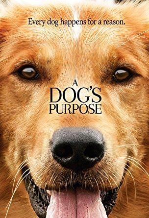 A Dog's Purpose Movie Night