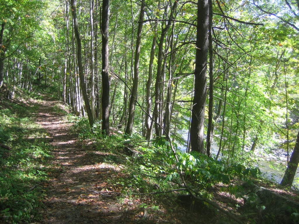 Bluestone Turnpike Trail