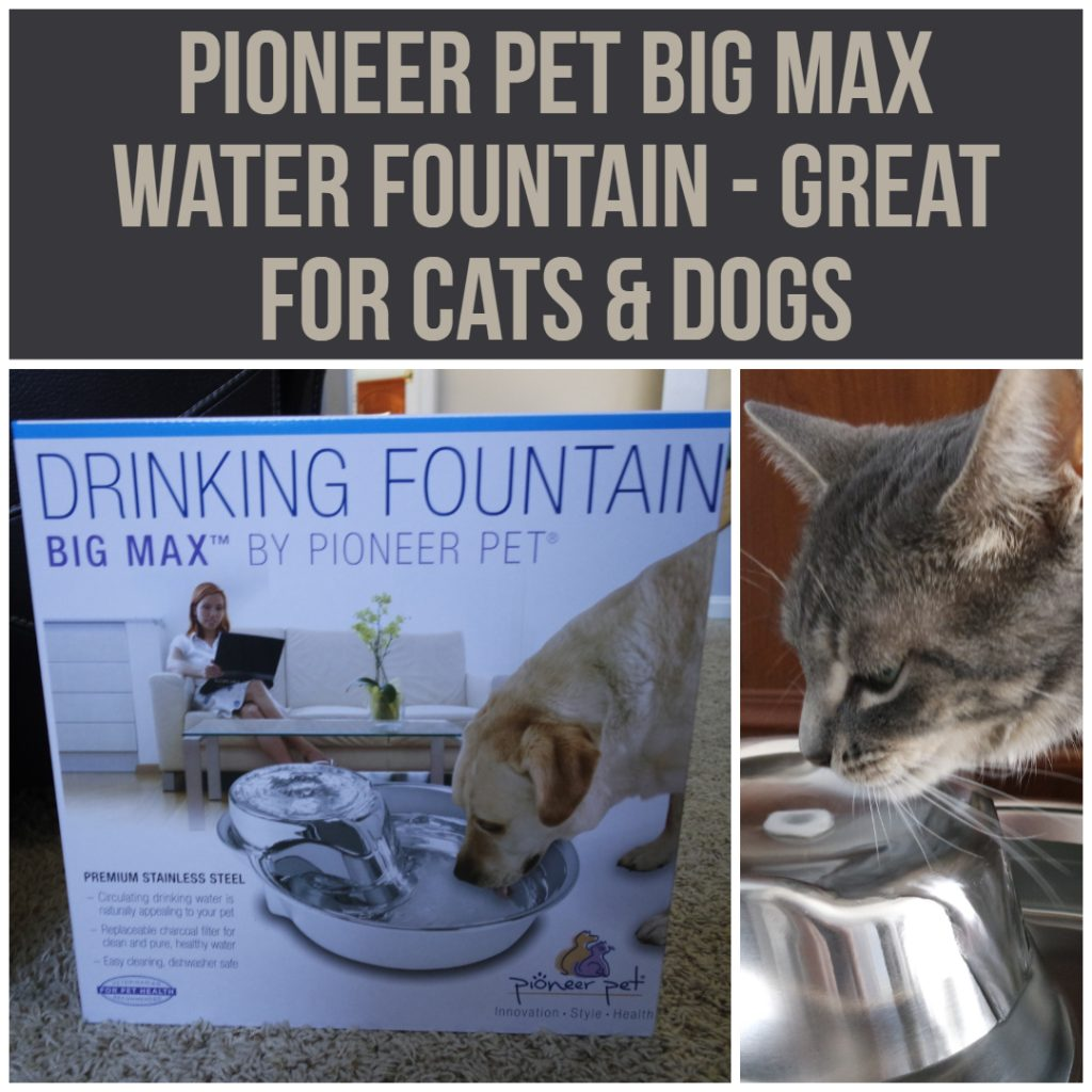 Pioneer Pet Big Max Water Fountain - Great For #Cats & #Dogs
